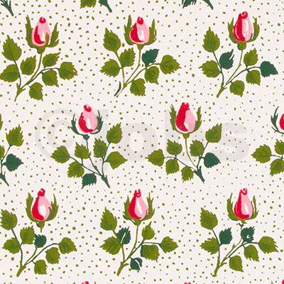 Rosenknopp (rosa)